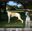 Superb Siblings Percy and Destiny Graced the Cover of eWhippetzine October 2011. See the full ad at:  http://www.ewhippetzine.com/nysahill1011.html