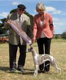 Desty Goes Runner Up Best in Show Under Judge Miles Gunter. Presented by Co-Owner Yvonne Barter (Satang).