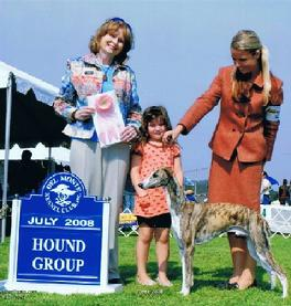 """Teak"" - Endeavor's Intrigue at Nysa Hill, wins Puppy Group First at 9 months."