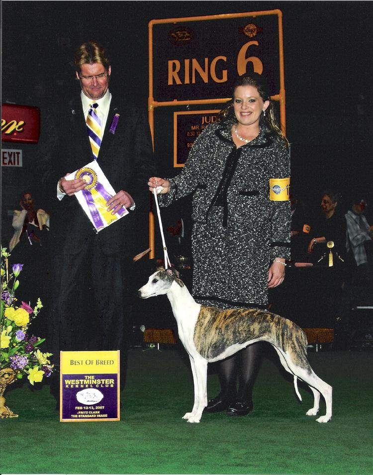 Judge Mr. Randy E. Garren awards Am Can Ch Brushwood's Moxi of Endeavor Best of Breed at the Westminster Kennel Club 2007.